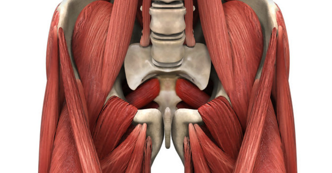 My Hip Flexors are Causing Low Back Pain? image